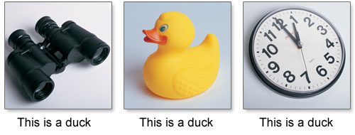 This is a duck (well not really)
